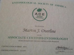 Marty Ace Cert (2)