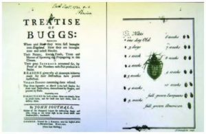 Treatise on Bedbugs
